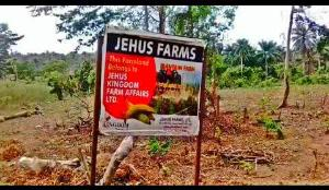 Land for sale  Farm Estate at Abule-Ojo village, situated in Ipara- Remo, around Ogere in Ogun State Remo North Ogun