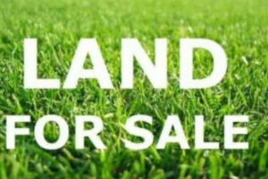 Land for sale Oluobansanjo Port-harcourt/Aba Expressway Port Harcourt Rivers - 0