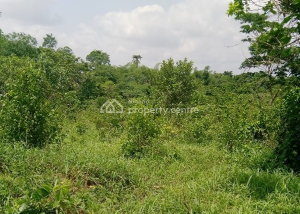 Residential Land Land for sale - Adeniyi Jones Ikeja Lagos