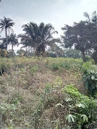 Residential Land Land for sale Ndikpa town Awka North Anambra