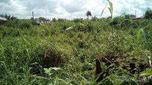 Land for sale Ikot eneobong Calabar Cross River