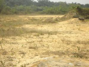 Land for sale Arapagi Eleranigbe Ibeju-Lekki Lagos
