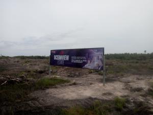 Mixed   Use Land Land for rent Free Trade Zone Ibeju-Lekki Lagos