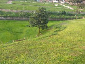 Residential Land Land for rent Arepo Ogun