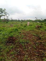 Residential Land Land for rent Nil Agbara Agbara-Igbesa Ogun