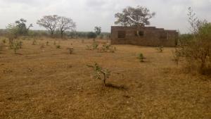 Land for sale Gbagede/Kabba Road. Ganmo Amoyo Ifelodun Kwara
