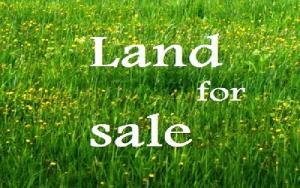 Land for sale Oluwalogbom Agidingbi Ikeja Lagos