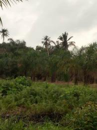 Residential Land Land for sale Avu, Owerri Owerri Imo