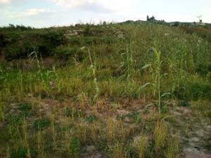 Residential Land Land for sale Behind Water Reservoir Opposite Police Secondary School Minna Bosso Niger