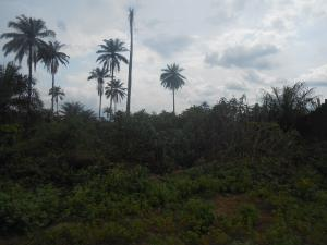 Commercial Land Land for sale idu uruan by water board Uyo Akwa Ibom