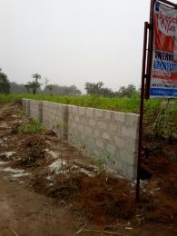 Land for sale Airport Road Ngor-Okpala Imo - 0