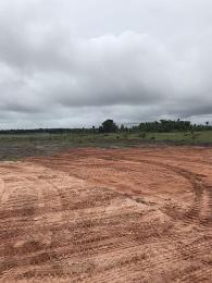 Land for sale Eleko Ibeju-Lekki Lagos - 1