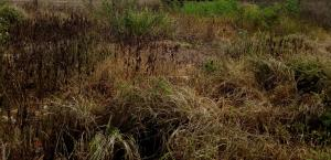 Land for sale Kujama Main Expressway Chikun Kaduna