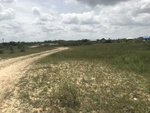 Land for sale lekki free trade zone Free Trade Zone Ibeju-Lekki Lagos