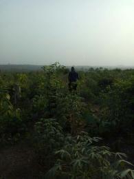 Land for sale Papa-Ilaro road. Papalanto Ewekoro Ogun