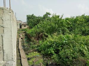 Land for sale Taodak estate  Ifako-gbagada Gbagada Lagos