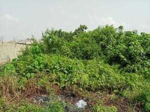 Land for sale Taodak estate  Ifako-gbagada Gbagada Lagos