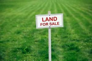 Commercial Land Land for sale Along Talba farm before Building Materials Market Shiroro Niger
