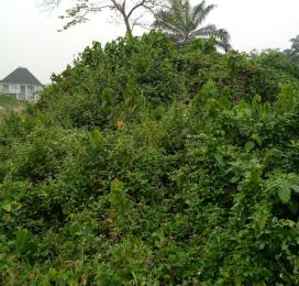 Mixed   Use Land Land for sale Elimgbu Obio-Akpor Rivers