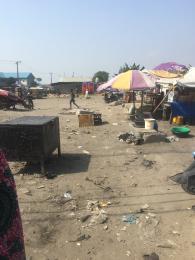 Land for sale ologolo Igbo-efon Lekki Lagos