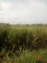 9 bedroom Residential Land Land for sale Kay farm estate Ifako-ogba Ogba Lagos