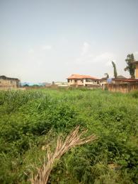 Mixed   Use Land Land for sale Mini Estate Oke-Ira Ogba Lagos