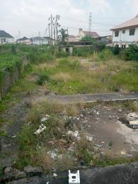1 bedroom mini flat  Residential Land Land for sale Soluyi Gbagada Lagos