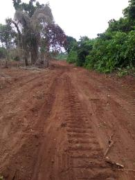 Serviced Residential Land Land for sale Avu oforola oweri Owerri Imo