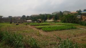 Mixed   Use Land Land for sale Akute Ifo Ogun