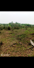 Serviced Residential Land Land for sale Behind Asaba Airport and 2nd Niger Bridge Proposed Links Road  Asaba Delta