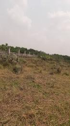 Mixed   Use Land Land for sale Close to the airport Asaba Delta