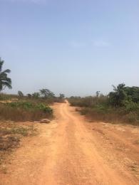 Serviced Residential Land Land for sale Airport Asaba Asaba Delta