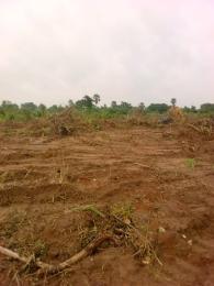 Residential Land Land for sale Behind Catholic pilgrimage center akor Nike road  Enugu Enugu