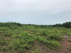 Land for sale Noforija  Epe Road Epe Lagos
