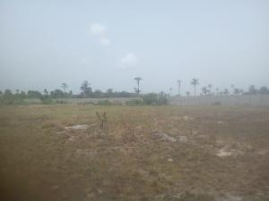 Serviced Residential Land Land for sale Okegelu Facing Coaster Express Road Ibeju Lekki Lagos Free Trade Zone Ibeju-Lekki Lagos