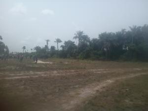 Serviced Residential Land Land for sale Eleranigbe Off Lekki Epe Expressway With Proximity To The Proposed Airport Ibeju Lekki Lagos Eleranigbe Ibeju-Lekki Lagos