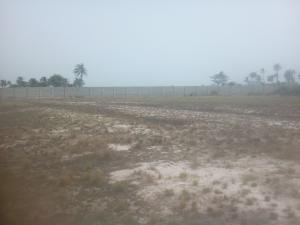 Serviced Residential Land Land for sale Lepia Town Along The Major Road Leading To Lacampaigne Tropicana Resort  LaCampaigne Tropicana Ibeju-Lekki Lagos