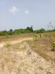 Serviced Residential Land Land for sale Ilamija Town Ibeju-Lekki Lagos