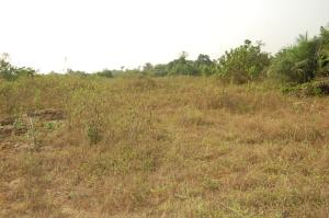 Serviced Residential Land Land for sale  15minutes Drive from Dangote Refinery LaCampaigne Tropicana Ibeju-Lekki Lagos