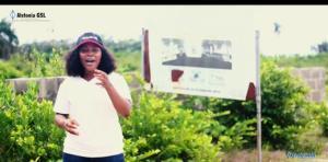 Serviced Residential Land Land for sale Peninsula Home Phase 2 Akodo Ise Ibeju-Lekki Lagos