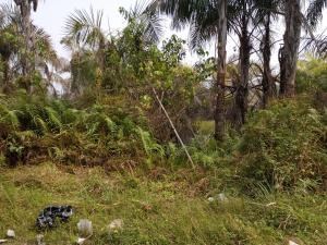 Residential Land Land for sale Block 50, Plot 2 Lekki Phase 2 Lekki Lagos