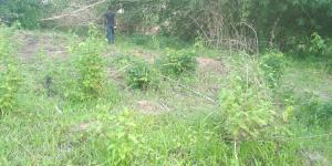 Residential Land Land for sale Abeokuta Ogun