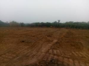 Mixed   Use Land Land for sale Olowora Ojodu Lagos