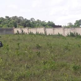 Serviced Residential Land Land for sale Along Airport Road Owerri Imo State Besides Westpoint Estate Owerri Imo