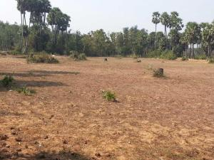 Mixed   Use Land Land for sale 10mins Drive to Sam Mbakwe airport. Owerri Imo
