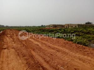 Mixed   Use Land Land for sale Port-Felicia Golf Resort Estate is Located in Rupkokwu  Tam David-West Boulevard (Obiri Ikwerre Airport road Rupkpokwu Port Harcourt Rivers