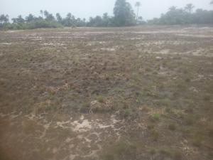 Serviced Residential Land Land for sale Shagamu Interchange 5 Minutes Drive From International Breweries Sagamu Sagamu Ogun