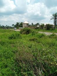 Commercial Land Land for sale Umuahia North Abia