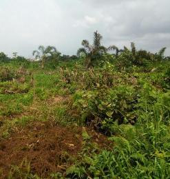 Land for sale isheri/jakande Oke-Afa Isolo Lagos