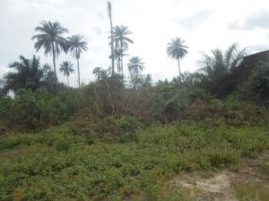 Commercial Land Land for sale idu uruan by water board Uyo Akwa Ibom